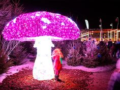One side of the mushroom makes you taller and the other side will make you smaller. #AliceInWonderland #festivallights #lights