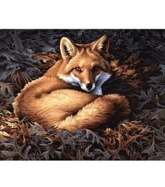 Dimensions Paint By Number Kit Sunlit Fox, , hi-res