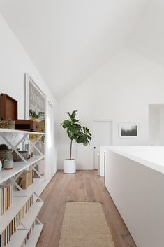 At the top of the stairs in this modern home, theres an open hallway with wood flooring, a tall plant in the corner, artwork, and shelving.
