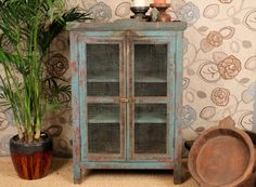 I'm doing this with two of our cabinets but with chicken wire!
