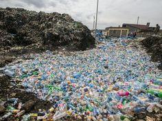 Scientists create mutant enzymes that eat plastic bottles - CNET