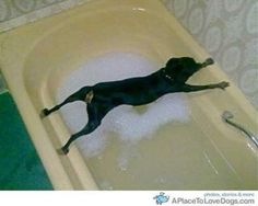 """""""I told you I do NOT like water!"""""""