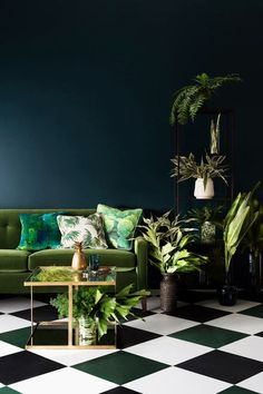 Haymes colour forecast 2015