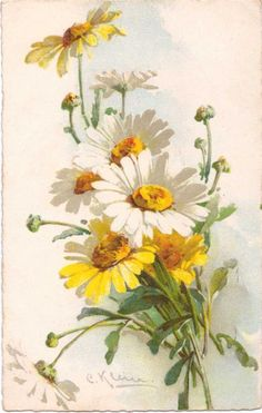 полевые цветы Sunflowers And Daisies, Yellow Flowers, Watercolor Flowers Tutorial, Watercolor Paintings, Black And White Flower Tattoo, Catherine Klein, Daisy, Sunflower Art, Rose Pictures