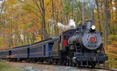 The Wilmington and Western offers an 'Autumn Leaf' adventure, which is the only fall foliage train ride in Delaware. All aboard! Train Travel, Travel Usa, Delaware Attractions, Places To Travel, Places To See, Gulliver's Travels, Train Pictures, Train Rides, Travel Photography