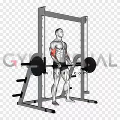 Full Body Training, Body Weight Training, Gym Training, Biceps Workout, Gym Workouts, At Home Workouts, Corps Fitness, Iron Games, Gym Tips