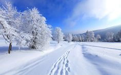 In this article, winter scenes with you. We will continue to share the scenes of nature then. Winter is one of the most beautiful seasons.