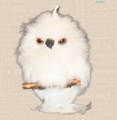 2012 Furry White Owl Caribou Coffee Ornament