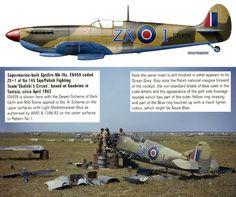Spitfire Mk IIA P7665 IXc EN459 BFD