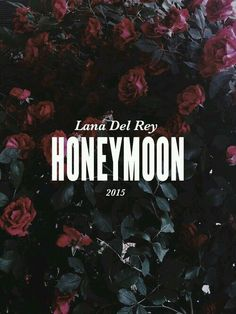 Fondos de pantalla Wallpapers Parental advisory lana del rey