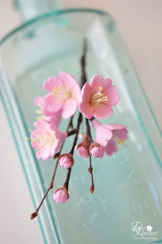 cherry blossom with aqua Fondant Flowers, Clay Flowers, Paper Flowers, Teal And Pink, Pink Turquoise, Aqua Blue, Cherry Blossom Cake, Cherry Blossoms, Sugar Paste Flowers