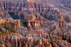 formations in the bryce amphitheater Bryce Canyon, Grand Canyon, Utah, National Parks, Vacation, Instagram Posts, Travel, Outdoor, Count