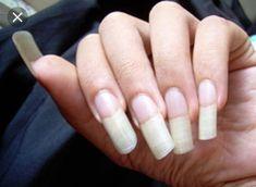 Garra, Fabulous Nails, Manicure, Beauty Hacks, Nail Designs, Nail Art, Sistema Solar, Wattpad, Videos