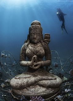Temple garden at the Biorock structures pemuteran bali...this is amazing, underwater statues placed there to give the coral & marine life new homes!