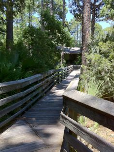 Nature Center, Hunting Island State Park
