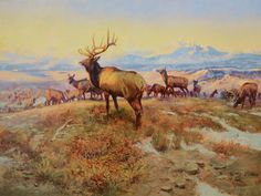 the exalted ruler 1912 Charles Marion Russell art for sale at Toperfect gallery. Buy the the exalted ruler 1912 Charles Marion Russell oil painting in Factory Price. All Paintings are Satisfaction Guaranteed Charles Marion Russell, Famous Art Paintings, Oil Paintings, Cowboy Art, Oil Painting Reproductions, Le Far West, Wildlife Art, Wildlife Paintings, Western Art