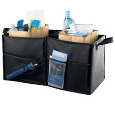 The Container Store > Folding Trunk Organizer