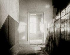 BELLEVUE-VOM WAHN ZUM LICHT.jpg