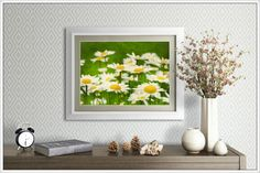 Field of Daisies Flower Photography Prints by MelissaReesePeterson