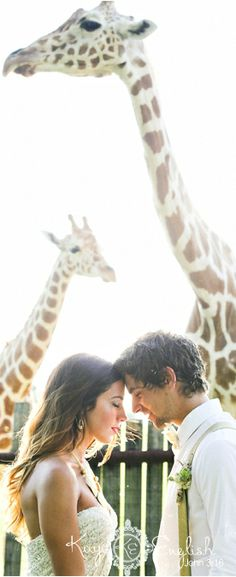 ** Safari Wedding Shoot *  #ashfordestate #njwedding photographer....WOW! <3 love this shot!