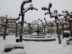 Plaza Hermosilla 5
