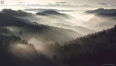 """""""Bohemian & Bavarian Forest"""" May 5, 2014  Passive • cool light •neutral cool colours • strong shadows • highlights naturally snaking its way throughout the valley"""