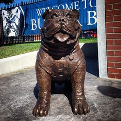 The Bowl has a new watch Dawg on duty. Butler Bulldogs, Butler University, March Madness, College Life, Lion Sculpture, Football, Watch, Pictures, Blue
