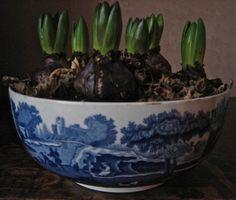 Spode Italian Blue bowl