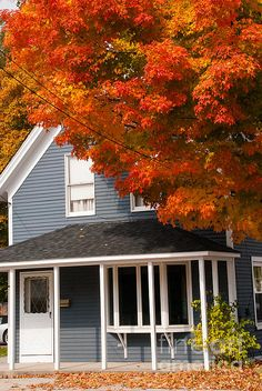 Classic New England two-story clapboard house with a small veranda by a large maple tree resplendent in brilliant red foliage in the autumn in Bennington Vermont.
