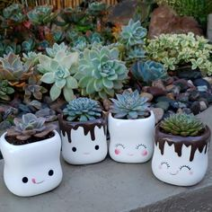 White pots (cute faces) Swipe for more . White pots (cute faces) Swipe for more & . Succulent Planter Diy, Succulent Gardening, Cacti And Succulents, Planting Succulents, Painted Plant Pots, Painted Flower Pots, Face Planters, Diy Planters, Decoration Plante