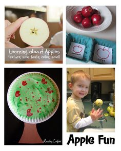 Learning about Apples in over 20 different ways featured at Tuesday Tots this week.