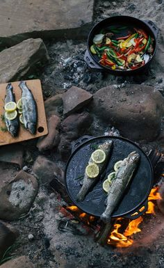 Enjoyable camp cooking recipes are a specifically excellent activity for household camp outs. On a household camping journey, fun camp cooking dishes can be tried at the end of a day while you are taking pleasure in the campfire. Camping Life, Camping Meals, Camping Hacks, Camping Dishes, Camping Recipes, Backpacking Meals, Kayak Camping, Ultralight Backpacking, Camping Hammock