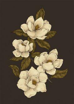 Magnolias Graphic Hoodies by Jessica Roux - Unisex Pullover White - LARGE - Front Print - Pullover Flor Magnolia, Magnolia Flower, Gardenia Tattoo, Tatoo Manga, Botanical Illustration, Framed Art Prints, Art Inspo, Magnolias, Artsy