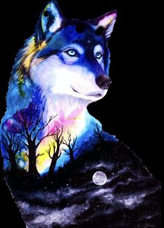 Pin by Joan Carson on animals in 2019 Wolf Wallpaper, Cute Wallpaper Backgrounds, Animal Wallpaper, Cute Animal Drawings, Cute Drawings, Beautiful Wolves, Animals Beautiful, Fantasy Wolf, Fantasy Art