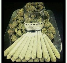 Cannabis enthusiast|Dedicated stoner. Follow me to be entertained|educated in the wonderful w☯rld of...