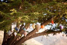 i'd love a tree full of lanterns in my backyard.