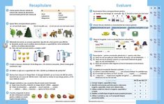 Matematică şi explorarea mediului - Manual pentru clasa a II-a - semestrul al II-lea