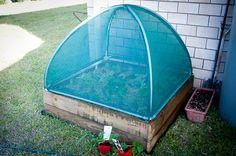 Herb Garden-4