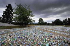 What's the Problem with Plastic Bottles?