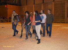 Relatos Ecuestres: COACHING CON CABALLOS. MADRID HORSE WEEK 2012.