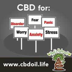 "That's Natural CBD Oil from Hemp - Legal in all 50 States.  Research is showing the link between cannabinoids like CBD and the treatment of anxiety and related issues.  From the abstract ""In conclusion, our findings indicate that CBD could represent a novel fast antidepressant drug, via enhancing both serotonergic and glutamate cortical signalling through a 5-HT1A receptor-dependent mechanism.""  See more at www.cbdoil.life #natural #health #alternative #wellness #healthy #home #mom #life…"