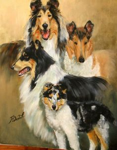 Collie print dog art with double designer mat