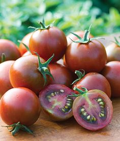 Grow robust tomato plants with Burpee's high yield tomato seeds today. Shop quality beefsteak, cherry, slicing, paste, and heirloom tomato seeds for sale. Find over 100 types of tomato seeds & plants for sale at Burpee. Growing Tomatoes Indoors, Growing Tomatoes In Containers, Growing Veggies, Grow Tomatoes, Baby Tomatoes, Heirloom Tomatoes, Cherry Tomatoes, Container Vegetables, Planting Vegetables