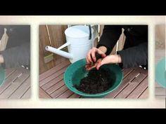 Alnatura-Kampagne 2012: Gutes wachsen lassen - Seedbombs selber machen