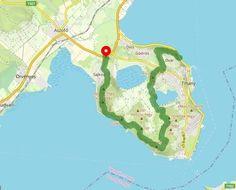 5+1 látnivaló Tihanyban, melytől a lélek is megnyugszik - A Balaton régió természeti kincsei - Éjjel-Nappal Balaton