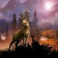http://www.zonamers.com/download-deer-hunter-2016-mod-apk-1-1-0/ #games #game #zonamers #modapk #apkmod #mod #gamemodding #deer-hunter