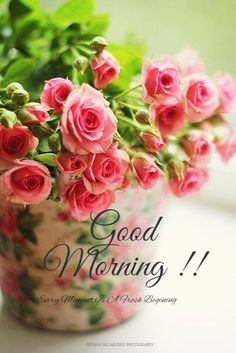 Good Morning Flowers Pictures, Good Morning Beautiful Pictures, Good Morning Nature, Good Morning Roses, Good Morning Images Download, Good Morning Friends Quotes, Good Morning Image Quotes, Morning Memes, Sunday Quotes
