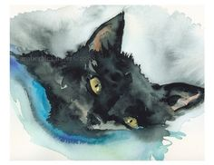 """""""Nutcase Tucked In"""" Cat Art by Amber Alexander from Middlesex, VT"""