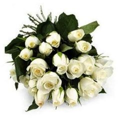 "24 white roses bunch""say it with love""  www.indibest.com"