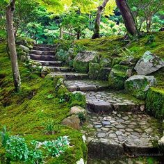 Could someone please landscape my garden like this? I just love a mossy garden, they have such a calming vibe If you're visiting Nara don't miss the hidden gem that is Yoshiki-en Gardens. While popular Isui-en gardens are next door, I actually preferred these gardens instead (all the moss won me over!) Where's your favourite Japanese garden? #traveltheworld #theinvisibletouristway ~